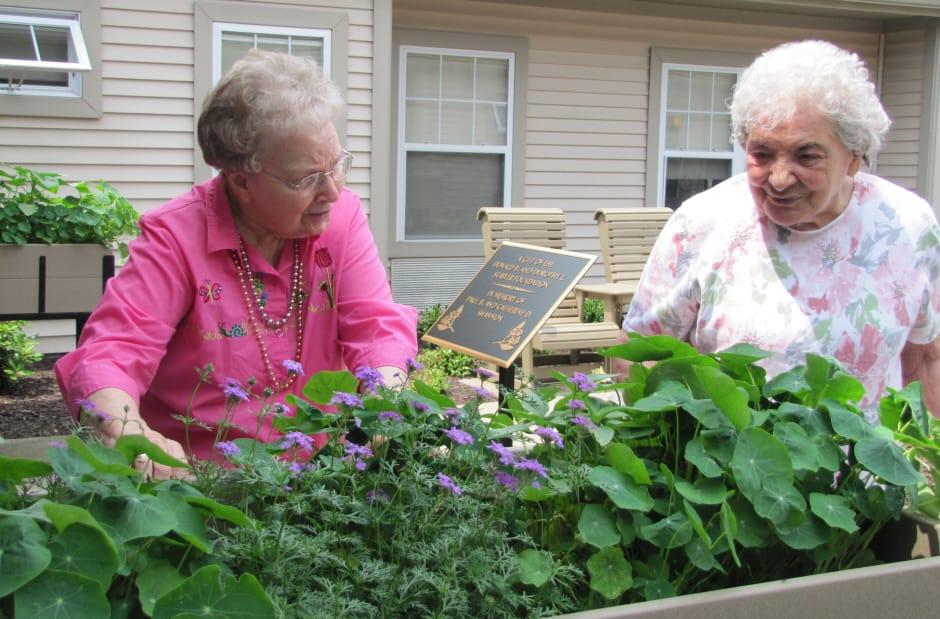 WRC Senior Services residents in garden